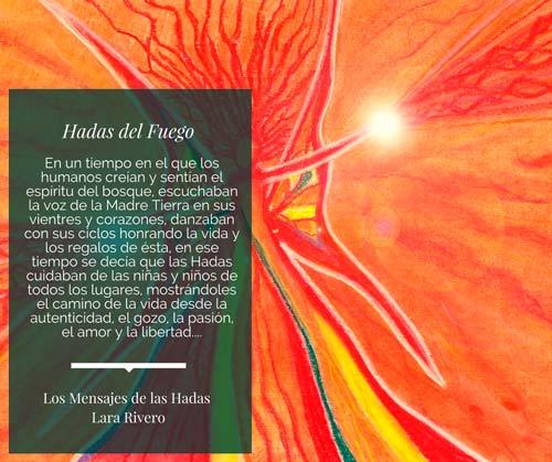 libro-img-06